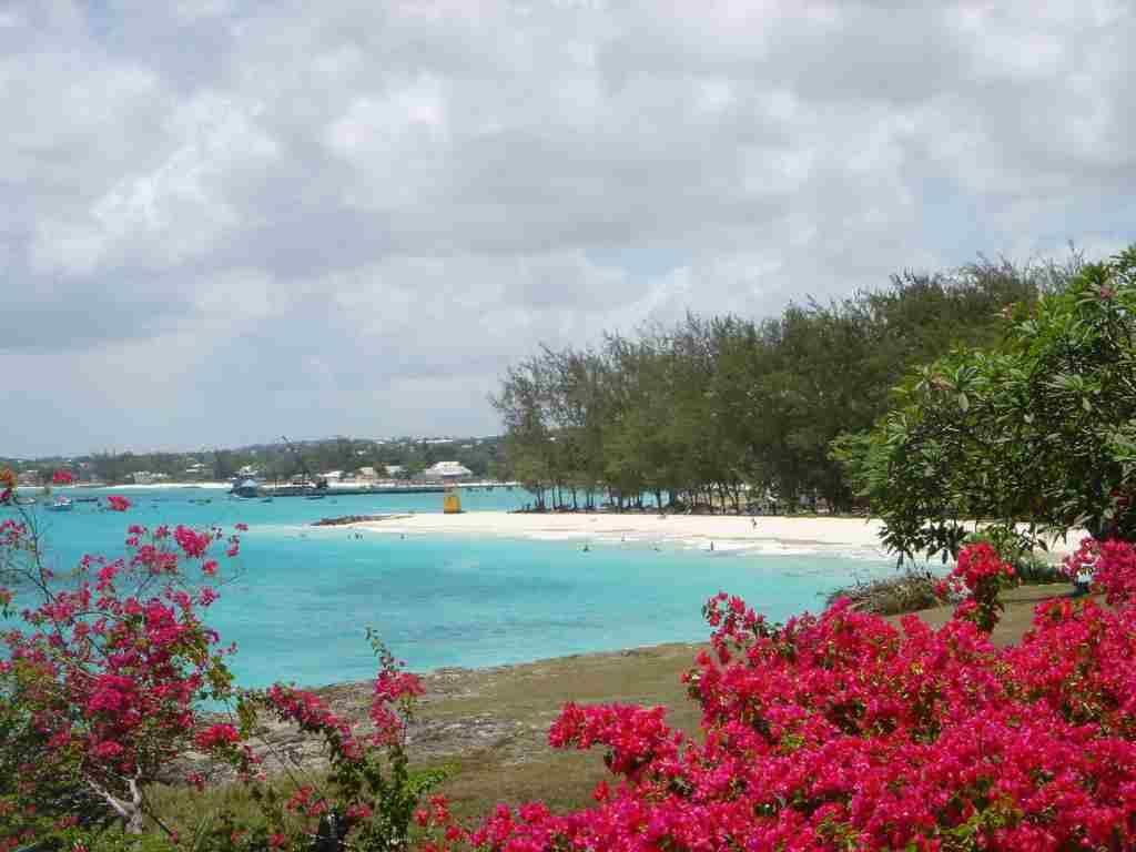 Barbados, locatie florala.