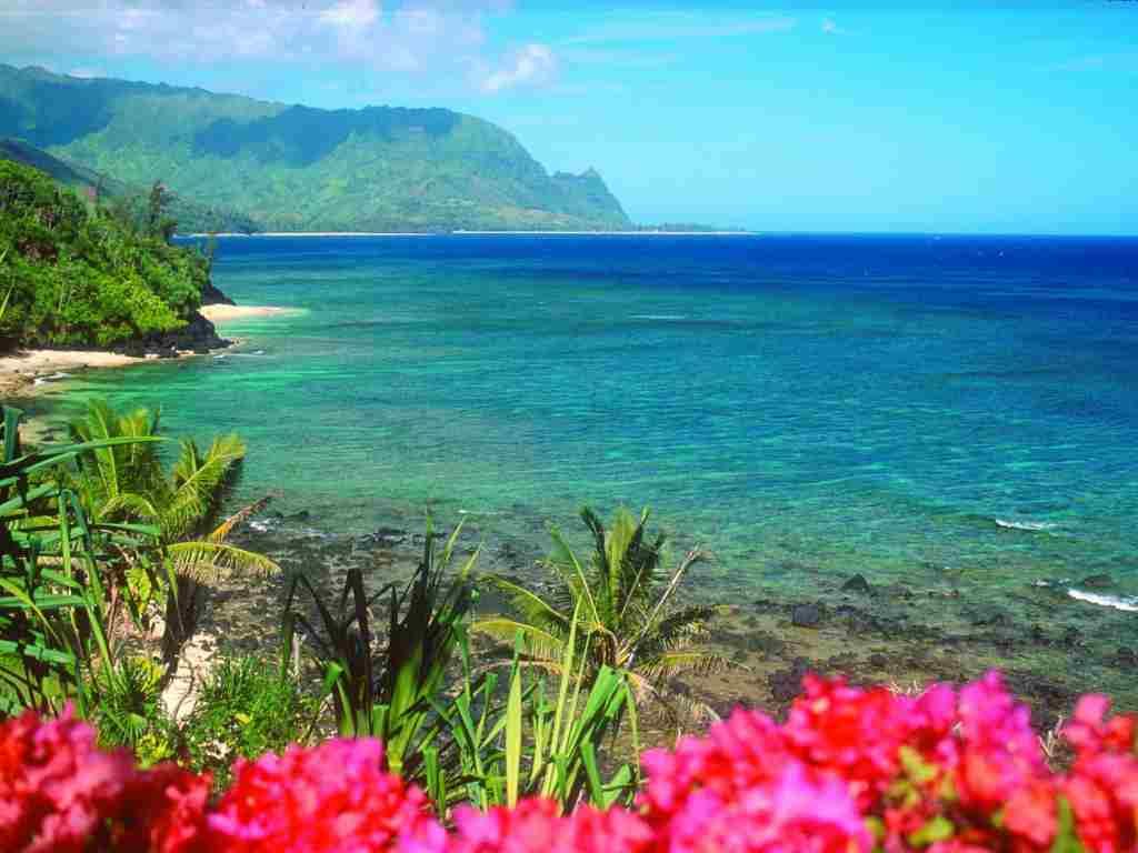 Luna de miere in Hawaii