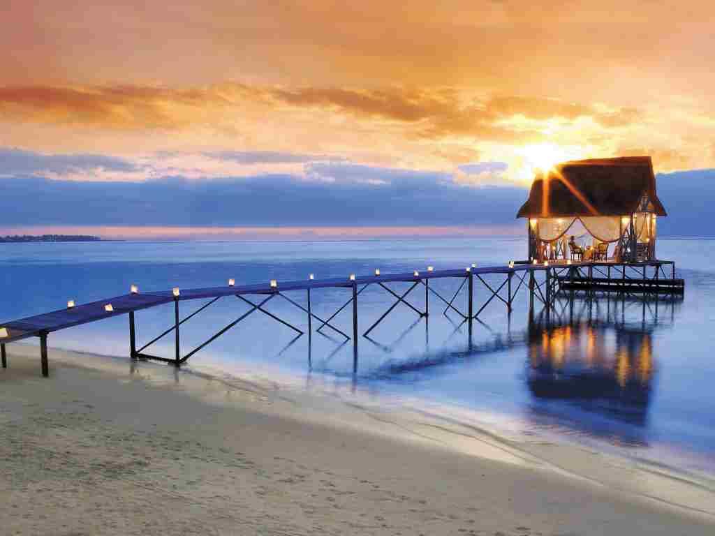 Apus in Mauritius